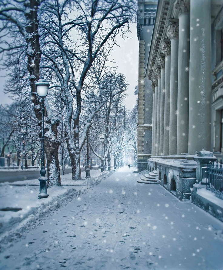 winter walk in kiev by   Inna Petrova